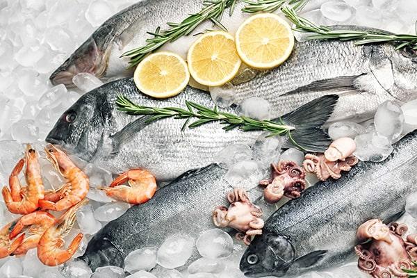 wholesale seafood